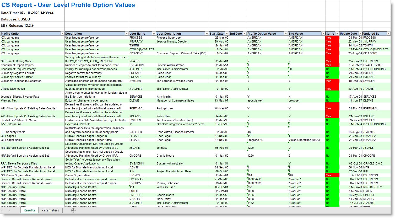 CS Report - Excel Based Report
